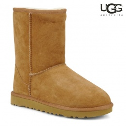 Boots UGG Short Camel Disponible 雪靴尺寸36-38